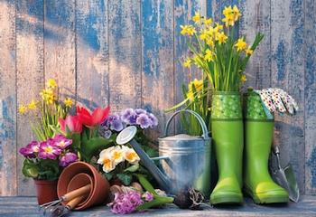Článek - Zahradníkův rok